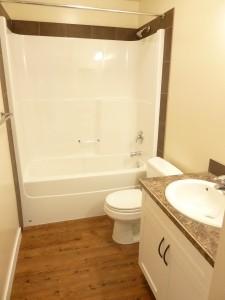 Black-Diamond-1-Bedroom-Apartment-For-Rent-Bath