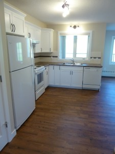 Black-Diamond-1-Bedroom-Apartment-For-Rent-Kitchen